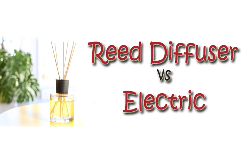 Electric Essential Oil Diffusers or Reed Diffusers: Which is Better?